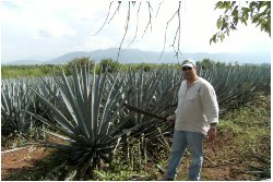 Jason with an agave plant